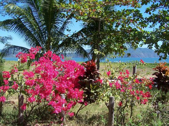 Fidelito Ranch & Lodge: Beautiful Tambor Beach