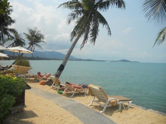 Fair House Villas & Spa : plage