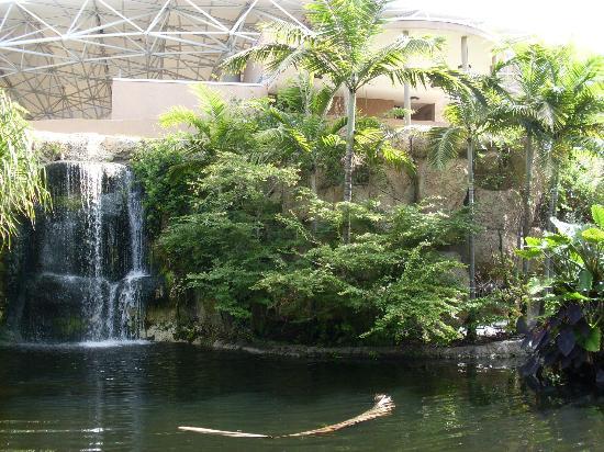 Parrot Jungle And Gardens Miami Garden Ftempo