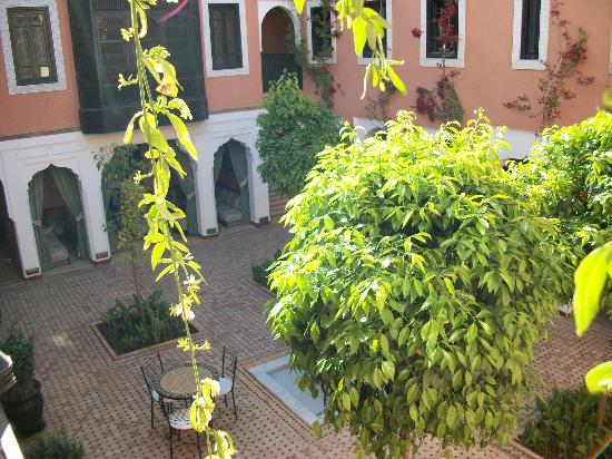 Les Borjs de la Kasbah: View of the orange tree courtyard from our window