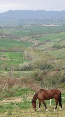 Belmonte Vacanze: Panorama da uno dei sentieri