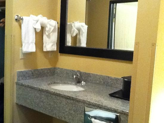 BEST WESTERN Sawtooth Inn & Suites : Outer wash area...another was in the bathroom