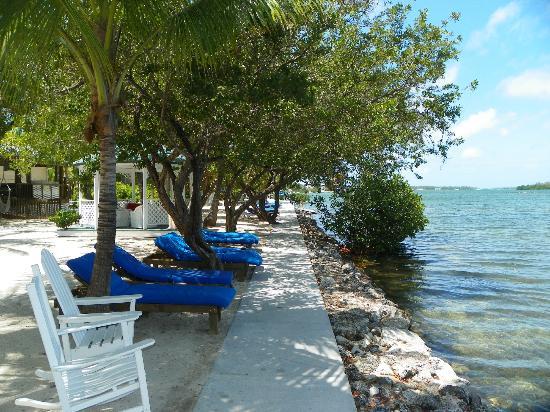 Banana Bay Resort - Key West: waterfront lounge chairs