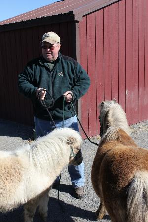 Airy Hill Farm B&B: Mark with the Miniature Horses (Gail and Bob)