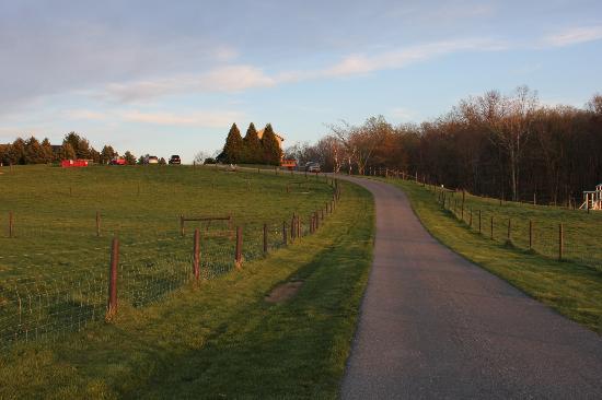 Airy Hill Farm B&B 사진