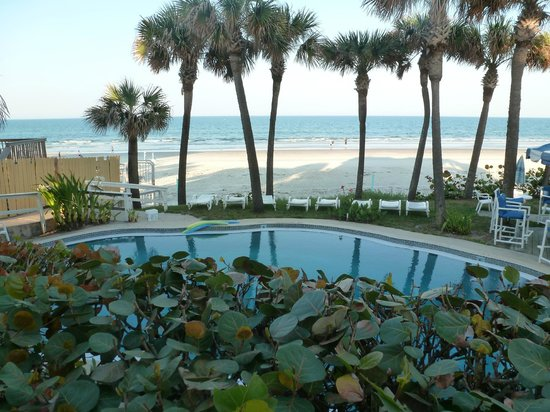 Flamingo Inn Updated 2018 Prices Reviews Daytona Beach Ss Fl Tripadvisor