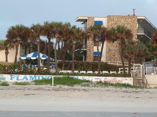 Flamingo Inn: Hotel view from the beach