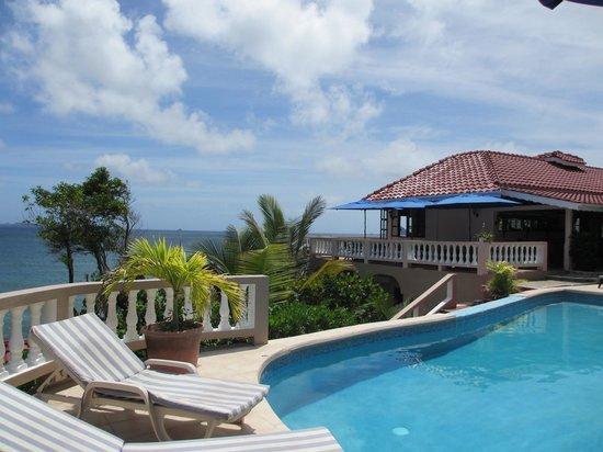 Petite Anse Hotel Grenada: Pool view