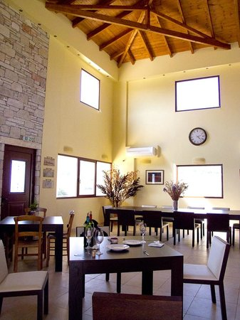 The beautiful tasting room at Olympia Land Winery, with high a ceiling and lots of natural light