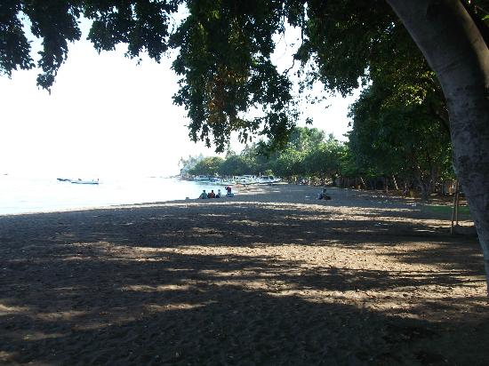 Lovina Beach, Indonesië: Beach is less crowded, compared with Kuta beach