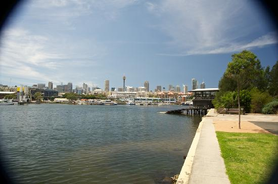 Forsyth Bed & Breakfast: Blackwattle Bay view to the City