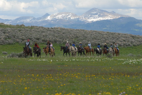 Yellowstone Horses - Eagle Ridge Ranch : The Diamond P Ranch West Yellowstone Montana since 1953