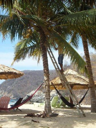 Bahia de la Luna: Paradise