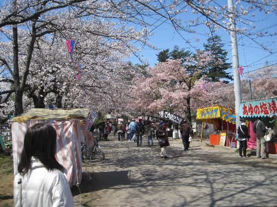 Noda, ญี่ปุ่น: 出店がならんでます