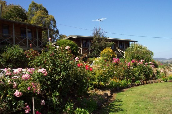 Mole Creek Holiday Village