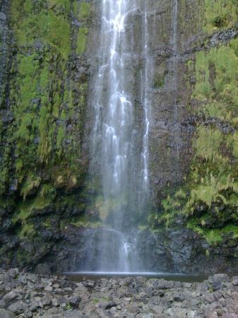 Aloha Cottage: One of many gorgeous Maui falls