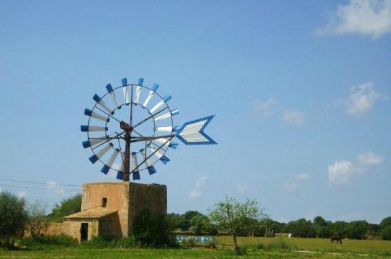 Agroturismo Alfabia Nou: Windmühle auf Mallorca