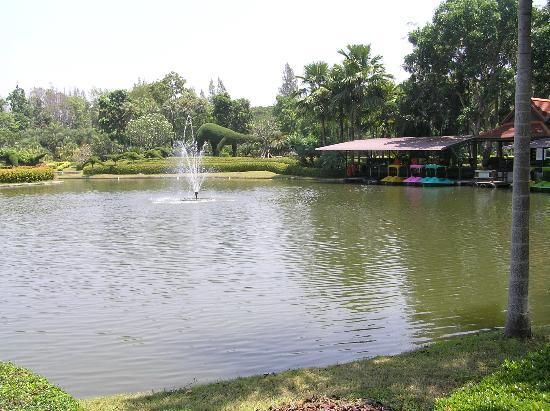 Horizon Village & Resort: Paddle boats in one of the lakes in the gardens surrounding the Resort