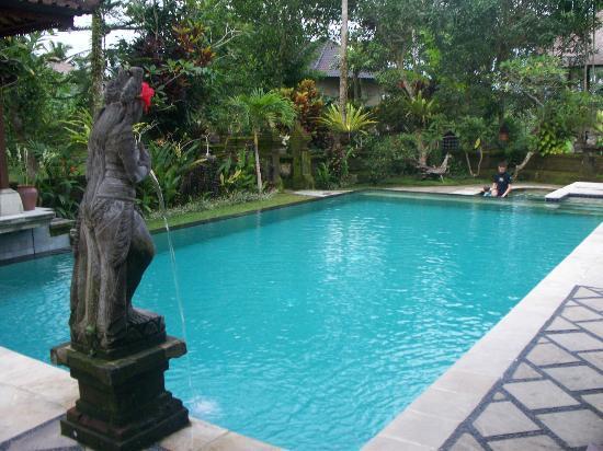 Alam Jiwa: kiddies pool right at the end
