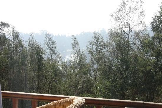 Surya Holidays Kodaikanal: From window