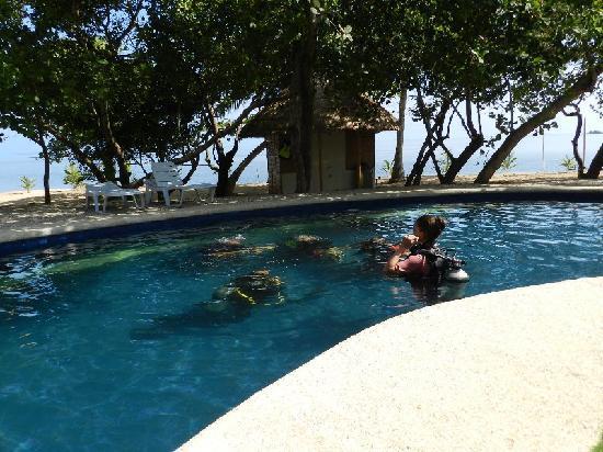 Cashew Grove Beach Resort Hotel - room photo 11013642