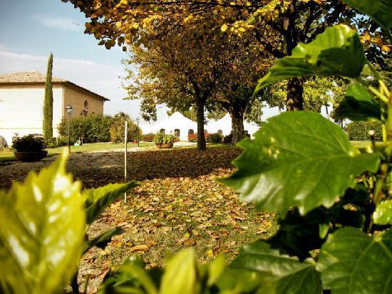 Villa San Nicolino: Fall View