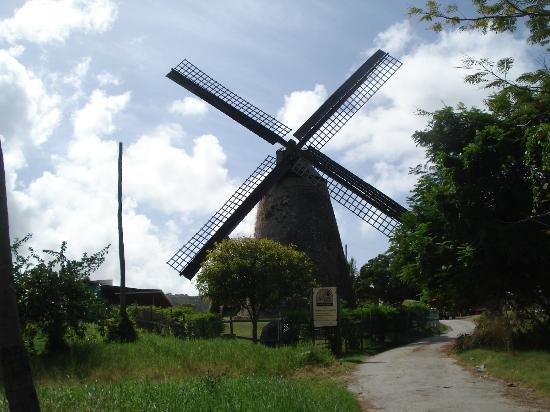 Morgan Lewis Sugar Mill: The Windmill