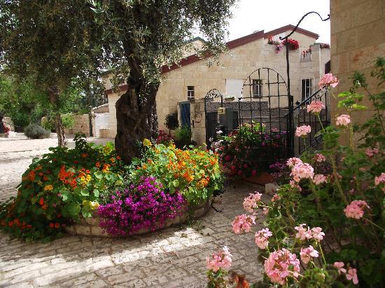 Avissar House: Our street