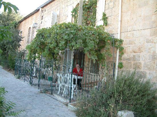 Avissar House: The Sultan vine Yard