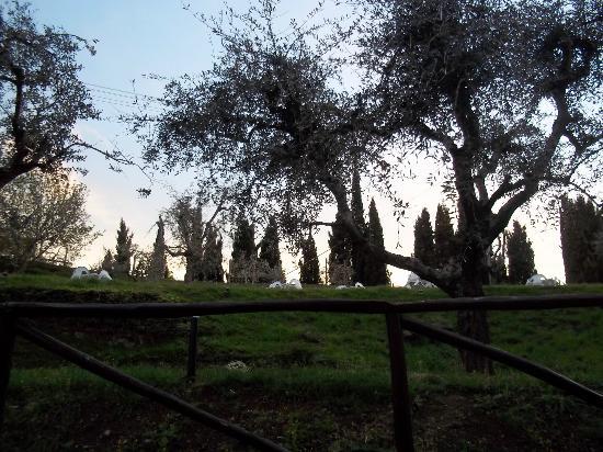 Villa Valenza: Dalla finestra della camera...