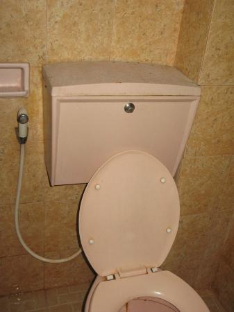 Kristina Hotel: the toilet