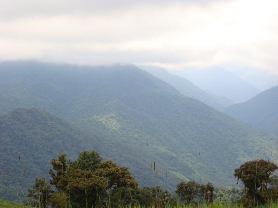 Mindo Cloud Forest Day Tours: Vista panorámica de Mindo cloud forest