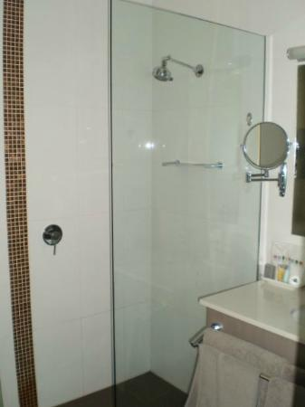 The George Hotel: Open walk in shower