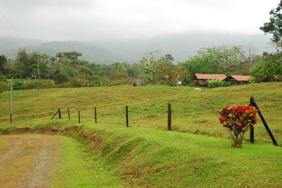 La Anita Rainforest Ranch: A view from the road
