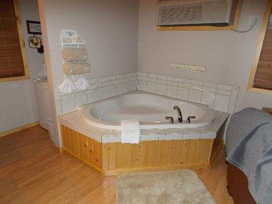 Bowman's Oak Hill Bed & Breakfast: Jacuzzi Tub in Cabin