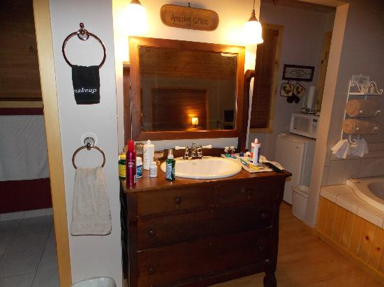 Bowman's Oak Hill Bed & Breakfast: Sink and Kitchenette