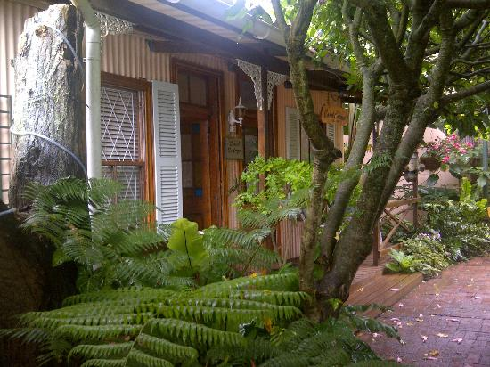 Coral Guest Cottages: Cottage set in the garden