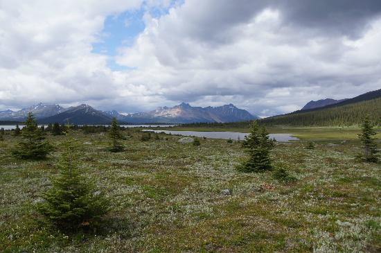 Tonquin Adventures: The view from the lodge