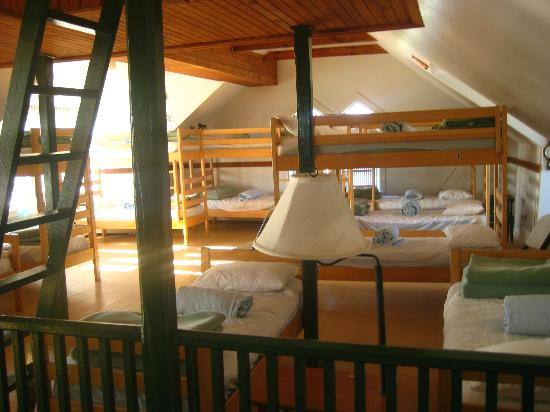 Star of the Sea Hostel: 20 bed female dorm