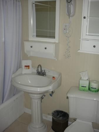 Bradley Park Hotel: Small bathroom
