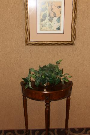 Hampton Inn Litchfield: Nicely decorated and very clean hotel