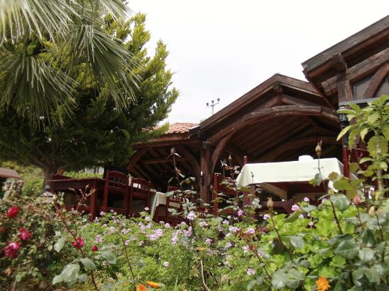 Pink Palace: A view of the lovely garden