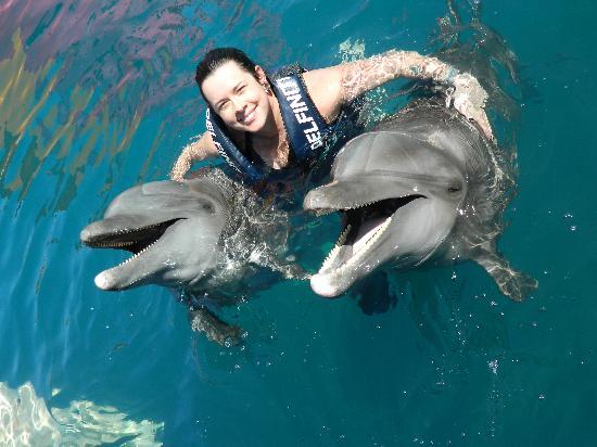 Delfiniti : Chato