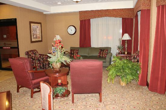 Hampton Inn Litchfield : Sitting area with television in the lobby area