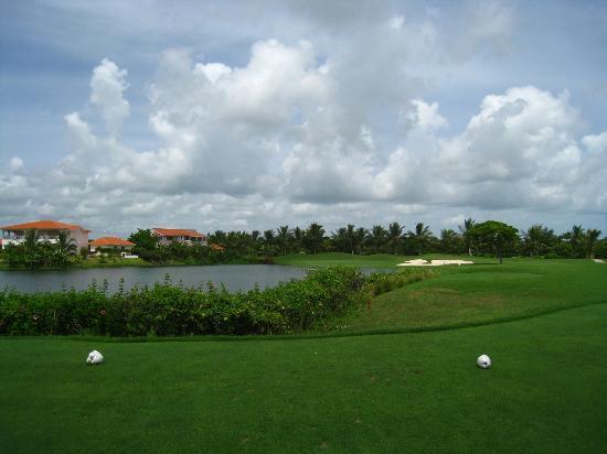 Cocotal Golf & Country Club: Benjamina
