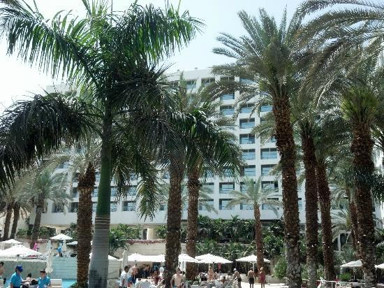 Isrotel Dead Sea Hotel & Spa: Vista desde la piscina
