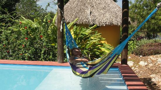 The Pickled Onion B&B / Restaurant: Hammock + swimming pool = full relax