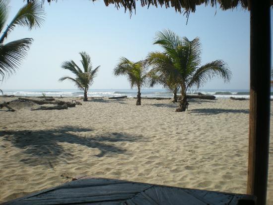 Bambuddha: Playa