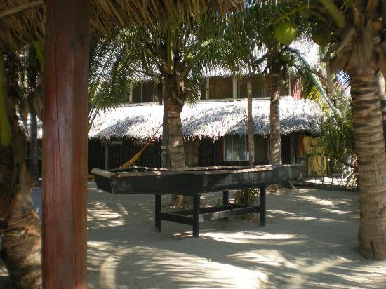 Bambuddha: Parque