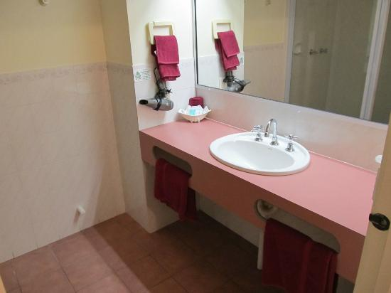 Twofold Bay Motor Inn: Sink and vanity counter